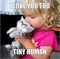 גם אני אוהב אותך